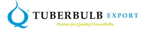 logo-tuberbulb
