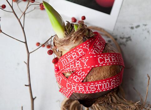 Kerstgeschenken-thumb