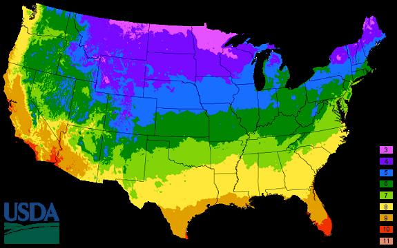 USDA-Hardiness-map