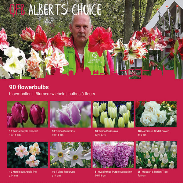 ALBERT's Collection
